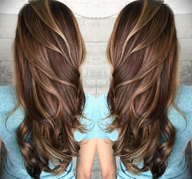 Feathery tortoiseshell hair