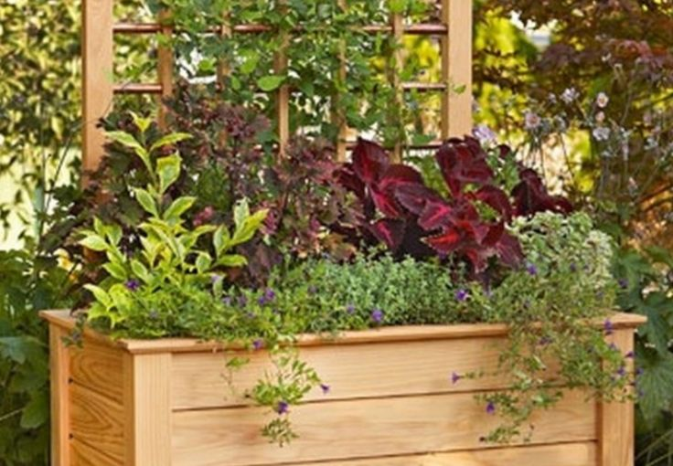 We  these Planter Privacy Screens and wouldn't they make your garden lo amazing! They're a brilliant way to hide an ugly wall or neighbouring fence, and to screen off your Compost area , Wheelie Bins or Plumbing & Air Conditioning Pipes. Learn how to make Planter Pallet Boxes for your garden as well.