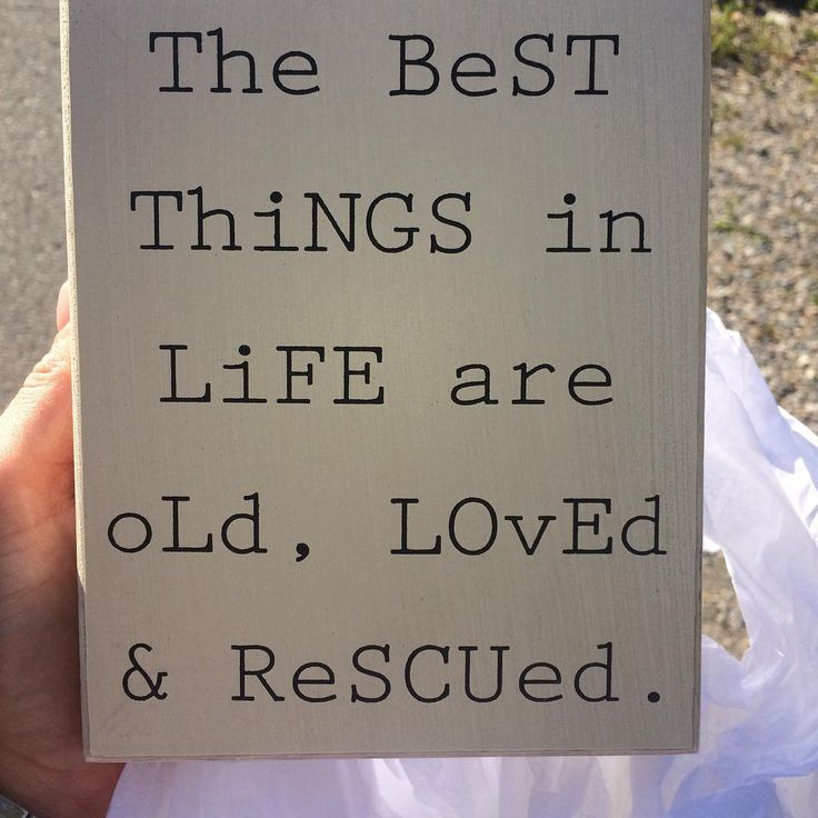 Quote about antiquing, thrifting, flea market finds, upcycling, restoration.