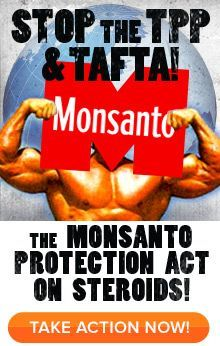Stop the TPP Trade Agreement | Help Stop Secret Trade Deals, the TPP and TAFTA: the global Monsanto ...