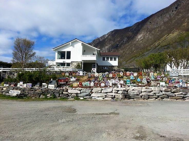 https://www.facebook.com/pages/Kasfjord-City-Minibyen/1491714207726887?fref=ts