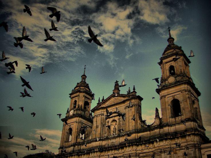 Que hermosa fotografía de la Catedral Primada de Colombia. #NuestroPatrimonio