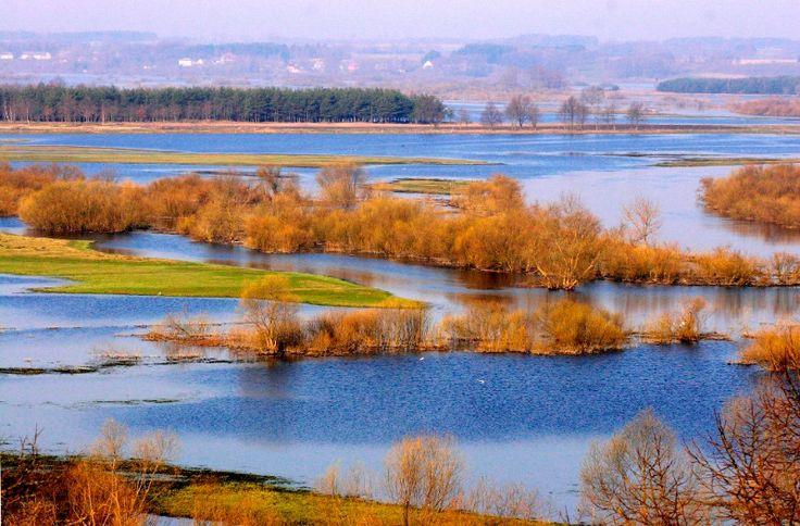 Biebrzański Park Narodowy - u styku Narwi i Biebrzy