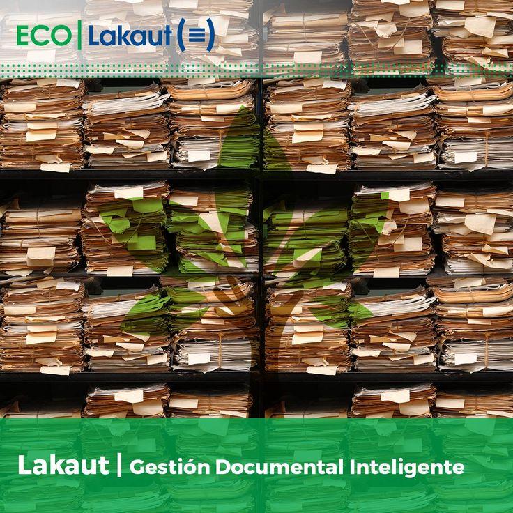 Lakaut (@lakaut) | Twitter #Lakaut