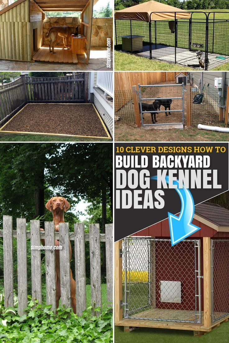 Good Pictures 15 Clever Designs Of How To Build Backyard Dog Kennel Ideas Tips Good Pictures 15 Clever Desig Dog Kennel Diy Dog Kennel Dog Kennel Cover Backyard dog kennel ideas