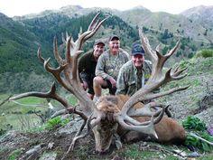 World Record SCI Red Stag Deer taken Spey Creek Trophy Hunting New Zealand John and Wyatt McBride