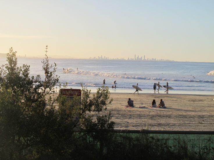 Snapper with Surfers Paradise skyline