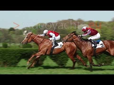 Slow Motion Race Horses Rennpferde Zeitlupe - YouTube