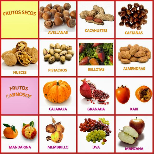 .::Un mundo de pequeñas cosas::.: 553.- Frutos del Otoño vamos a coger... *Aprendemos y reconocemos los frutos del otoño*