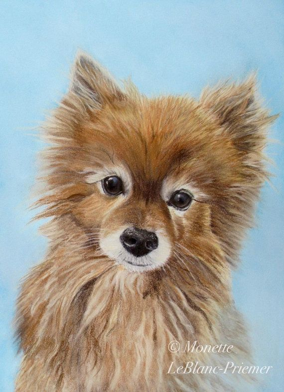 Brown Pomeranian Dog Wall Art Print Blue Decor Gift For Dog Person