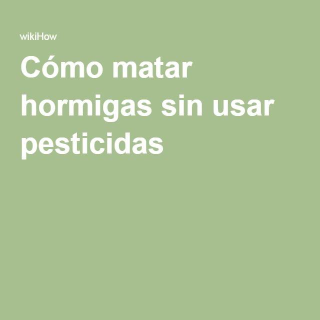 Cómo matar hormigas sin usar pesticidas