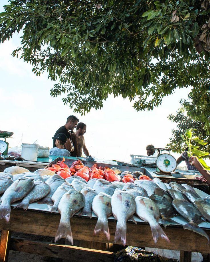 Perks of island life  #mauritius #experience #thoushallhaveafishyonalittledishy