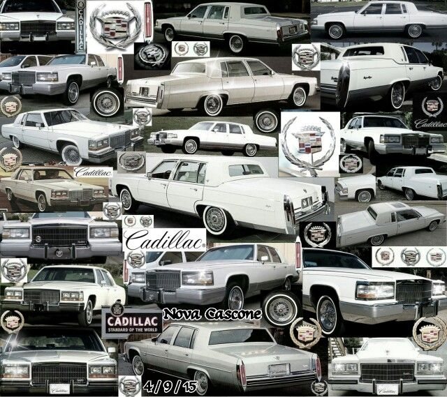 1000+ Images About Cadi-licious On Pinterest