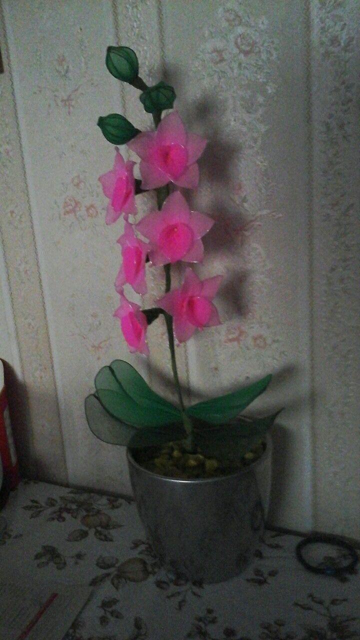 Harisnyavirág dendrobium orchidea-nylon dendrobium orchid