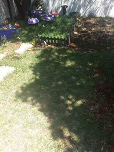 Green picket mini fence