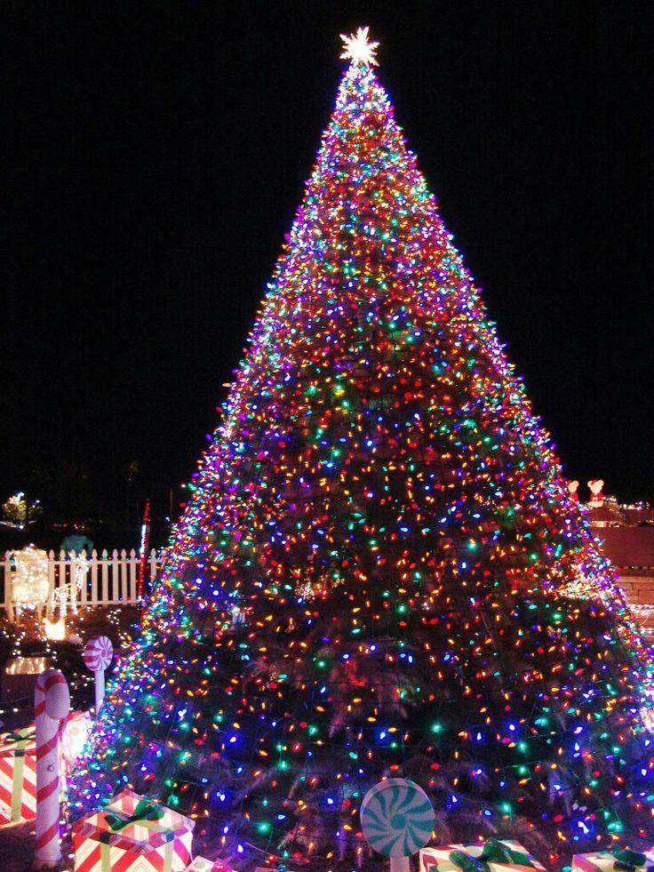 Christmas Lights, Christmas Stuff, Christmas Holidays, Merry Christmas,  Beautiful Christmas Trees, Wonderful Time, Christmas, Christmas Rope  Lights, ...