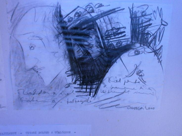 Csepregi György : Historical notebook / soldier and cronicler