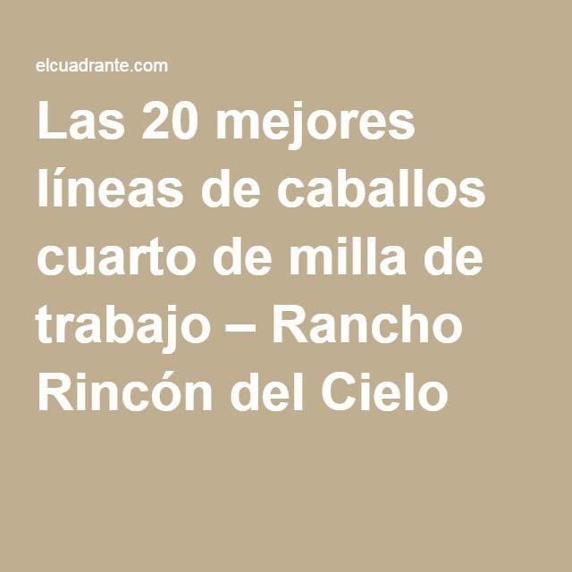 Las 20 mejores líneas de caballos cuarto de milla de trabajo – Rancho Rincón del Cielo
