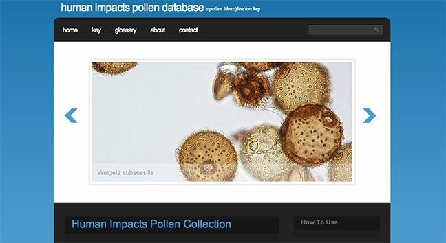 Pollen Database