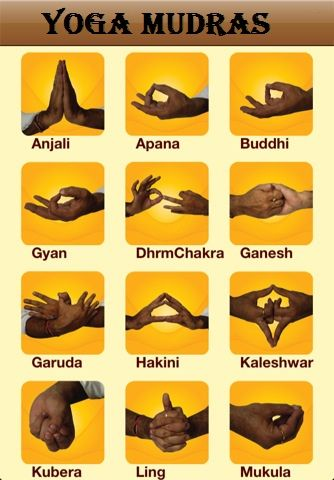 Beginners Guide to Yoga MUDRAS