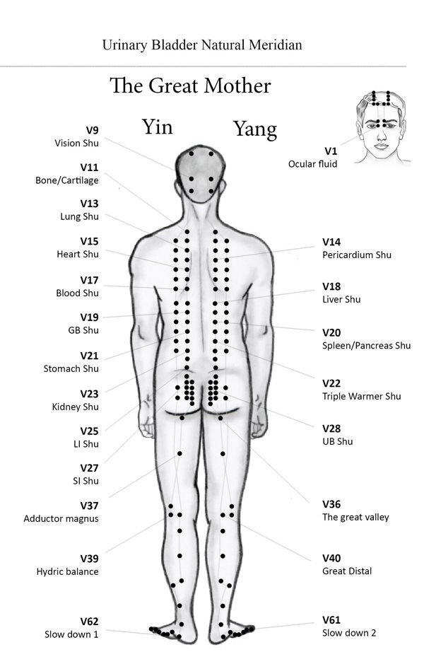 Best 25+ Meridian acupuncture ideas on Pinterest ...