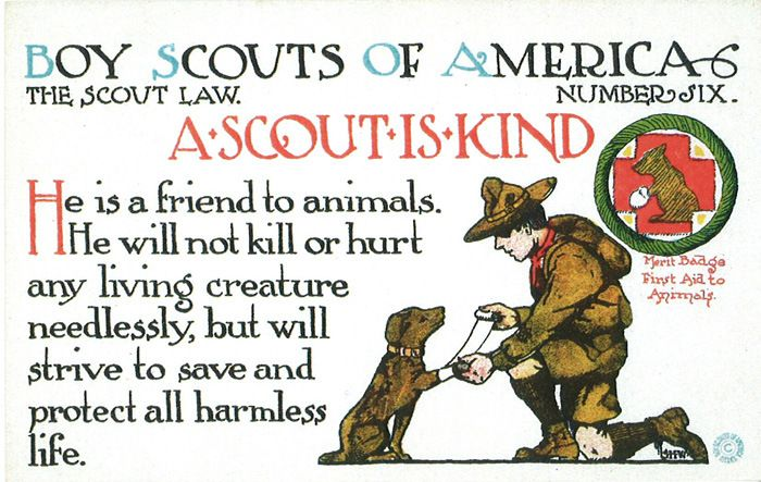These 1913 Scout Law postcards are the coolest thing you'll see today. Need these for my courts of honor. Great way to display what the values should really mean to each scout and not think of it as just some word.