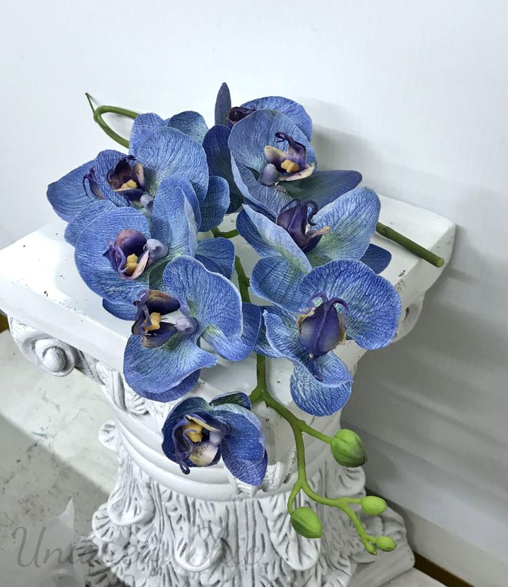 I absolutely love these blue teal touch orchids! They have a unique blue crayon scribbled texture that would look great in any arrangement, centrepiece, hairpiece, or for a boutonniere or corsage. Perfect for the DIY bride!  #truetouch #hairflowers #blueorchid #diyweddingsupplies #diyweddingflowers #realtouchorchid #blueorchidstem #blue #supplies #etsy