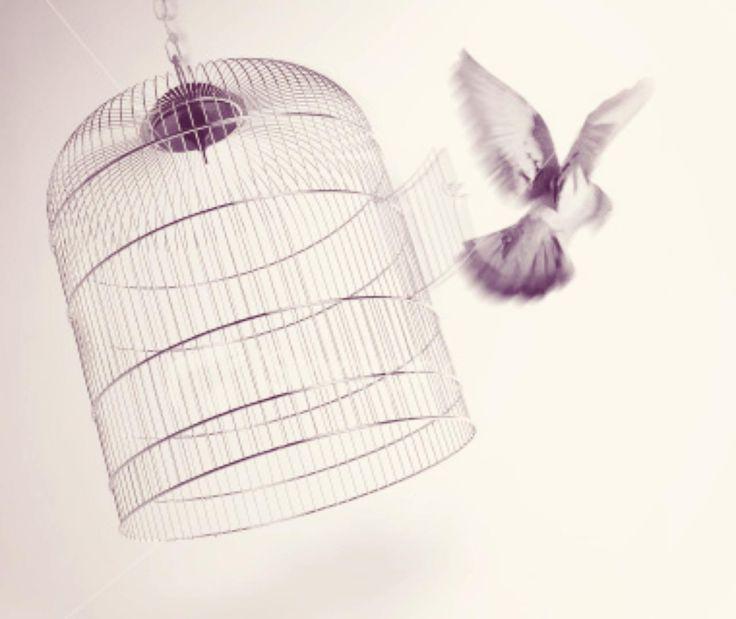 """La fantasia ci rende liberi. Letta da Sergio Carlacchiani una poesia di Keats: Fantasia.  """"Lascia sempre vagare la fantasia, È sempre altrove il piacere: E si scioglie, solo a toccarlo, dolce, Come le bolle quando la pioggia picchia; Lasciala quindi vagare, lei, l'alata, Per il pensiero che davanti ancor le si stende; Spalanca la porta alla gabbia della mente, E, vedrai, si lancerà volando verso il cielo.""""  #johnkeats, #fantasia, #poesierecitate,"""