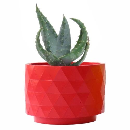 Aloe Ferox en la maceta Polygon roja, diseño exclusivo de RiivDesign.com para Mycoolcactus.com; precio orientativo 19€, $23.43