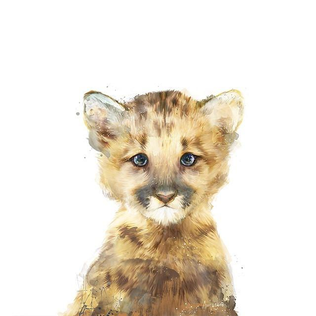 amy hamilton animals illustration 4