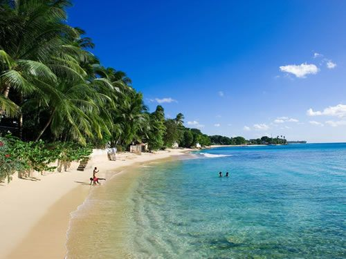 Best Caribbean Images On Pinterest Barbados Caribbean And - 10 things to see and do in barbados