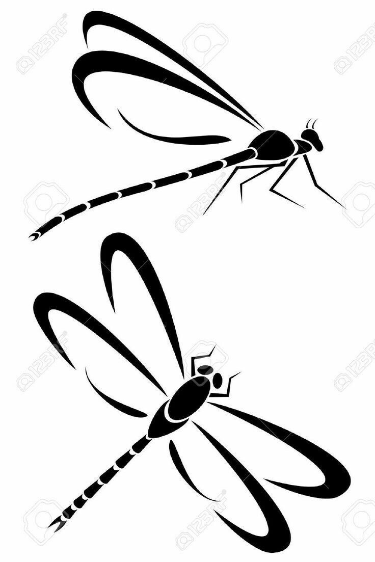 Pin By Puente Decreaciones On Nasekomye Dragonfly Art Dragonfly Butterfly Outline