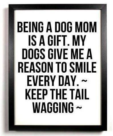 I am a dog mom. ♥