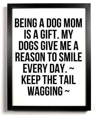 "Ba ha ha. The dog ""mom"" thing cracks me up. But it's still true. My puppy dogs make me happy every day!"