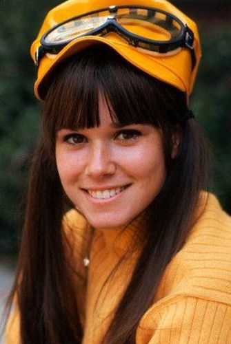 Barbara Hershey (Barbara Herzstein) (February 5, 1948) American actress, o.a. known from 'Chicago hope'.