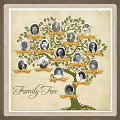 17 Best images about Family Tree on Pinterest | Trees, Search and ...