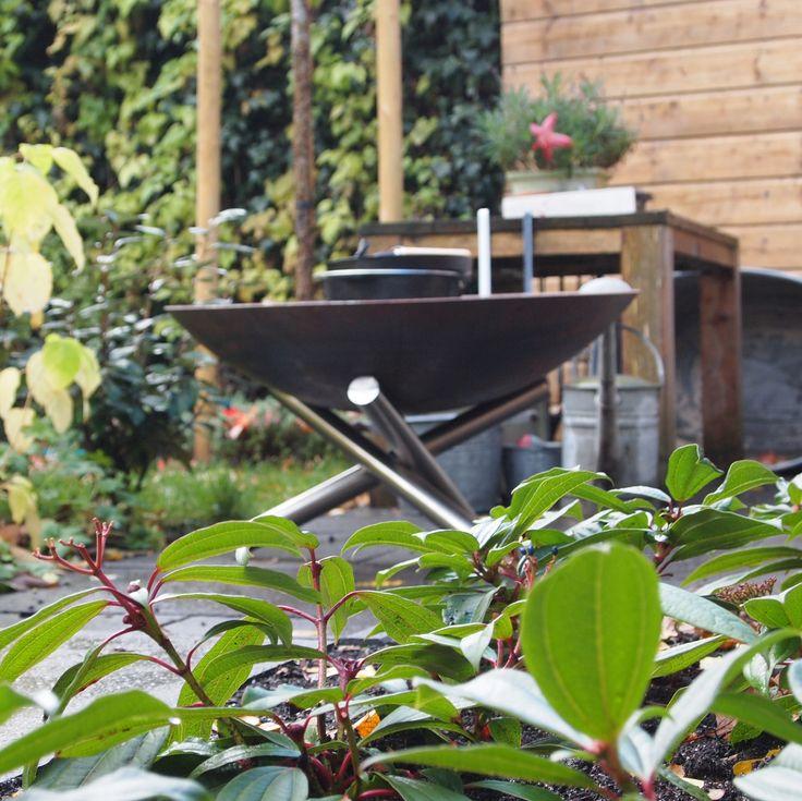 Wilt u op een bijzondere wijze sfeer en warmte in uw tuin creëren? Deze grote Vuurschaal Mikado van Samosa (Ø 80 cm) is een echte blikvanger in uw tuin! De schaal is van 3 mm dik cortenstaal en onderscheidt zich van andere vuurschalen door het bijzondere RVS onderstel. Deze mooie schaal is heel eenvoudig online te bestellen en wordt uiteraard GRATIS bij u thuisbezorgd!