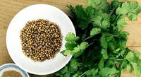 Dolor de Estómago - Plan B la Guía Té de Cilantro, buenísimo para el malestar estomacal.