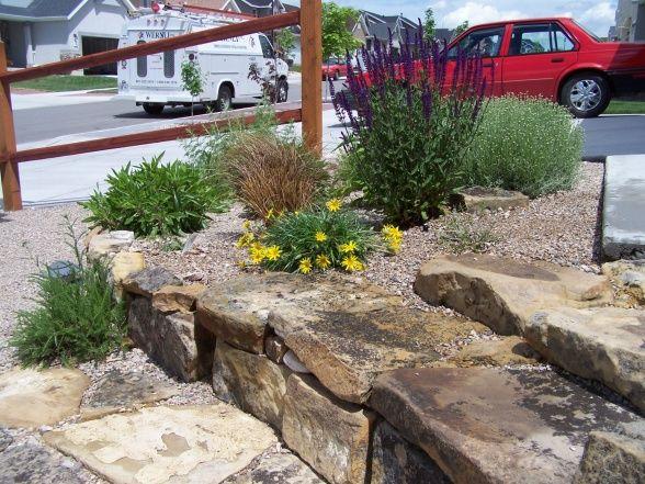 17 Best Images About Austin Gardening - Rock Gardens On Pinterest | Gardens Modern Front Yard ...