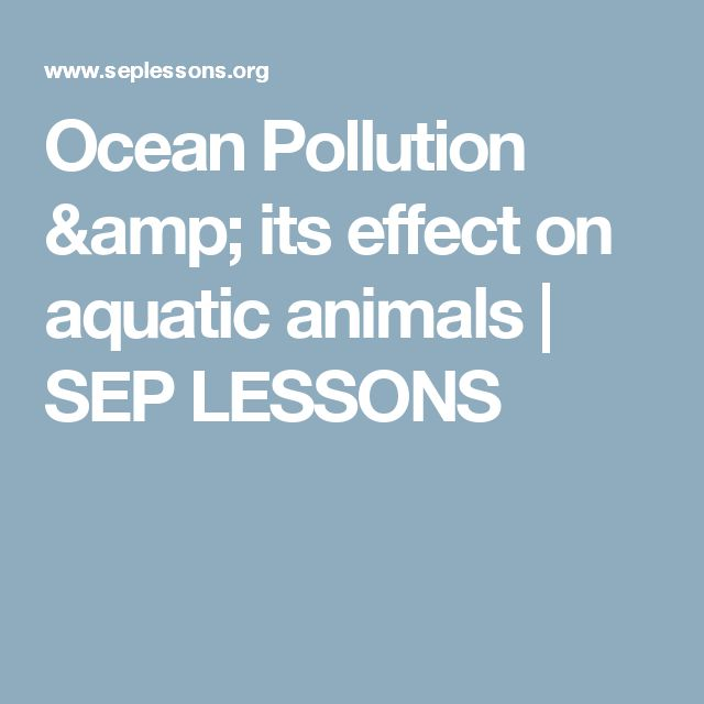 Ocean Pollution & its effect on aquatic animals | SEP LESSONS