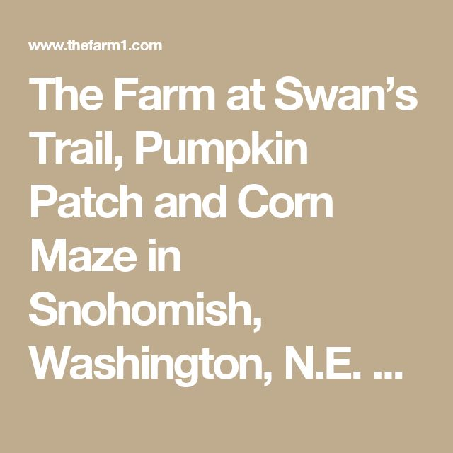 The Farm at Swan's Trail, Pumpkin Patch and Corn Maze in Snohomish, Washington, N.E. of Seattle