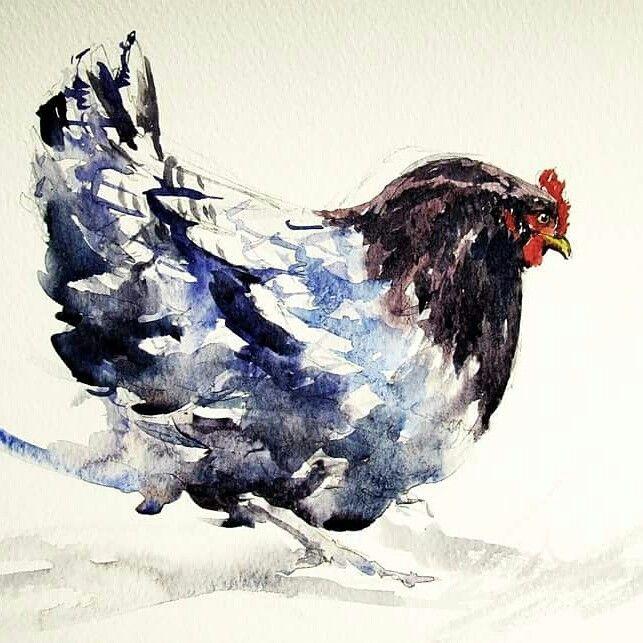 Joao Cabral.        Blue Cock