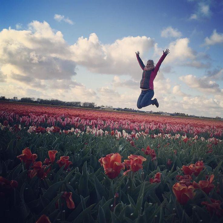 Holandsko chýbaš mi  #holand #niederlande #imissit #flowers #tulipany #aineveci #holiday #partylife #partypeople  #amsterdamjetop #lietamvoblakoch #instalike #love #cloud #traveling #cestujemposveteraztamasem by m.zatkova