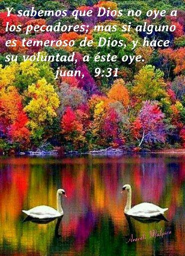 Juan, 9:31 - Y sabemos que Dios no oye a los pecadores; mas si alguno es temeroso de Dios, y hace su voluntad, a éste oye.