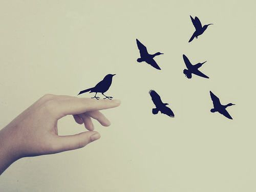 flying birds | via Tumblr | We Heart It | •skinny love ...