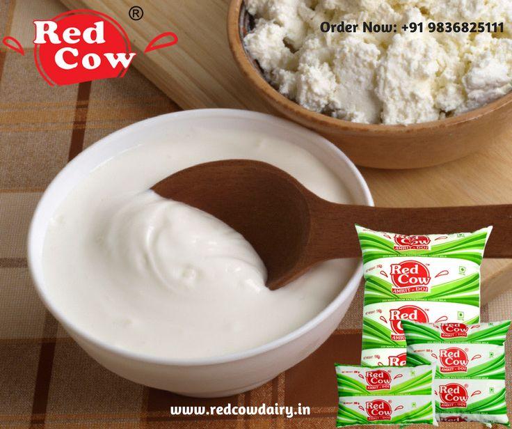 Fresh Dahi for Healthy Bone