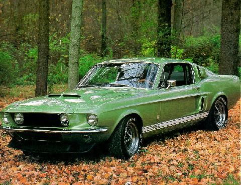 Picture of a Mustang Shelby Cobra Gt500 Green Front View (1969) in the Motorbase gallery of car pictures.