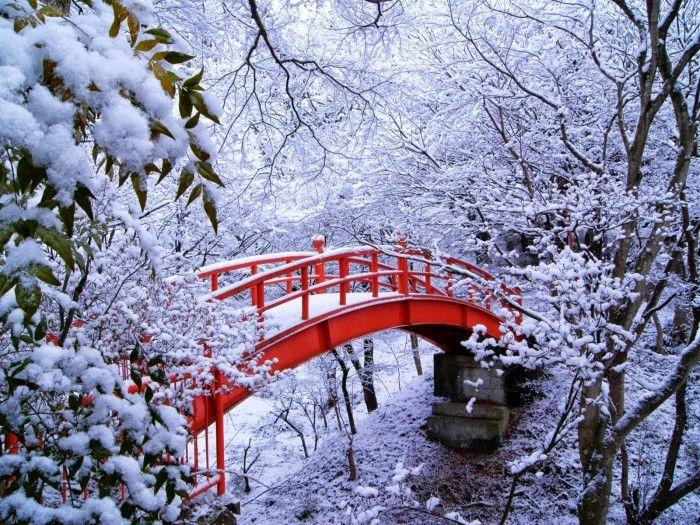 Зима фото. Красивая галерея