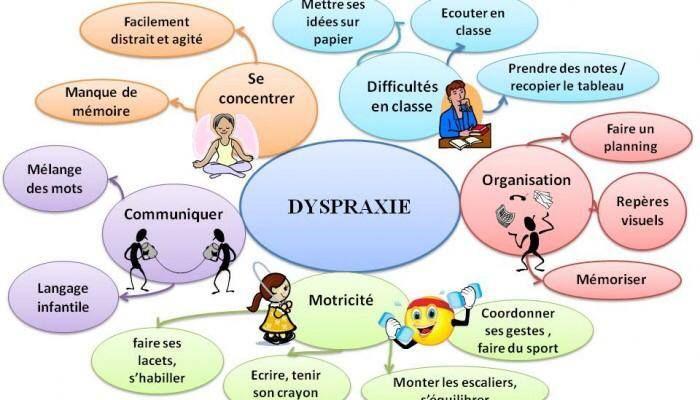Cartes mentales #dyspraxie #dys
