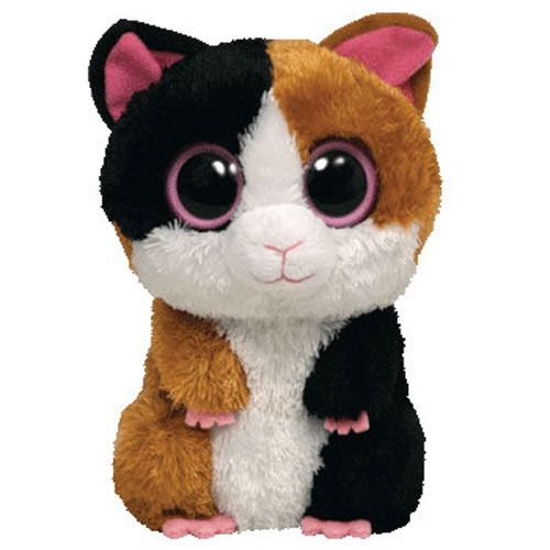Rare Beanie Boos | TY Beanie Boos - NIBBLES the Guinea Pig (Solid Eye Color) (Regular ...
